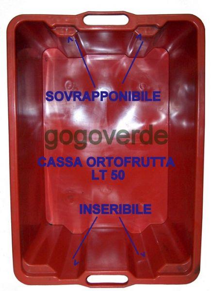 Cassetta per Frutta in Plastica 50lt Sovrapponibile - Uso Alimentare
