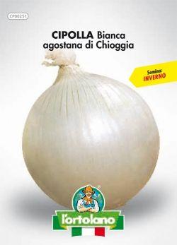 Sementi in busta di Cipolla Agostana di Chioggia