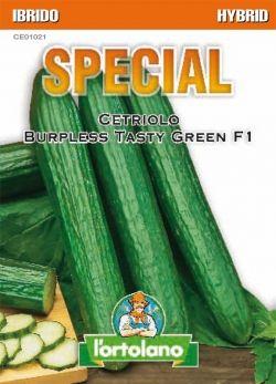 Sementi Ibride di Cetriolo Burpless Tasty Green F1