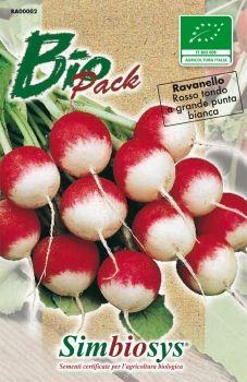 ravanello rosso tondo punta bianca bio
