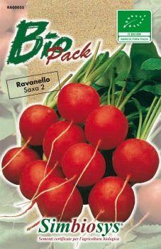 ravanello tondo rosso saxa 2 biologico