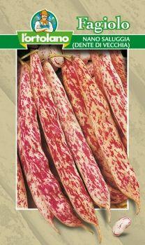Semi di Fagiolo Nano Saluggia Dente di Vecchia 250 g