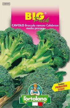 Semi di Cavolo Broccolo Ramoso Calabrese