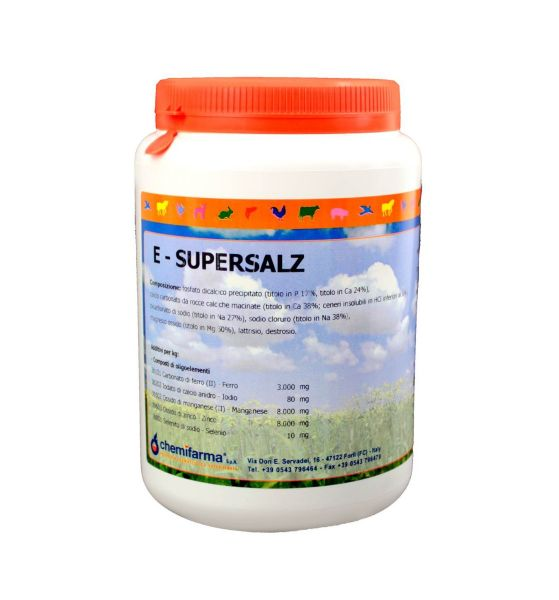 Integratore a base di Sali Minerali E-Supersalz 1kg