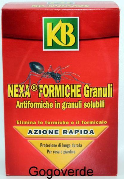 KB NEXA FORMICHE GRANULI - INSETTICIDA BARATTOLO GRAMMI 800 - GRANULI SOLUBULI