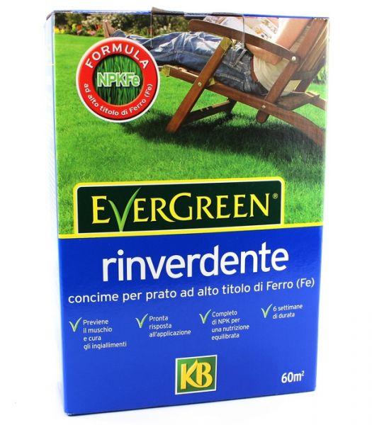 Concime rinverdente per prato Kb EverGreen 2 kg
