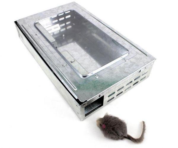 Trappola zincata per cattura roditori e blatte - S10
