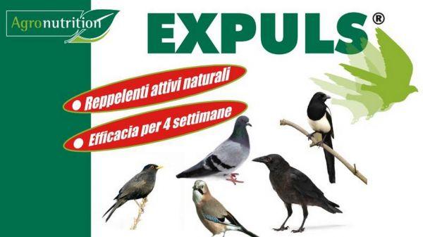 DISSUASORE REPELLENTE NATURALE PER UCCELLI (COLOMBI, GAZZE,ecc.) EXPULS - 1 Busta da 2 pz
