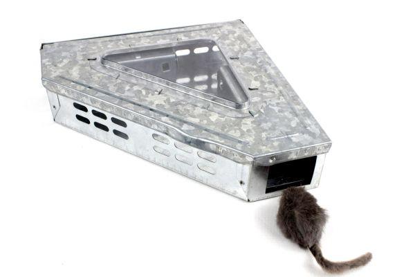 Trappola zincata angolare per cattura roditori e blatte - S20
